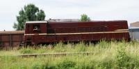 DSC09341