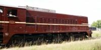 DSC09445